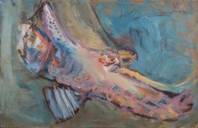 """In Flight"" - Red Tailed Hawks"