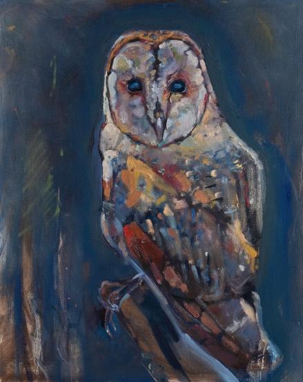 "Ghost Owl - Barn Owl 24"" x 30"" $720"