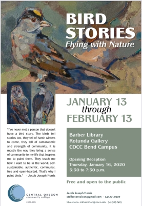 bird story poster